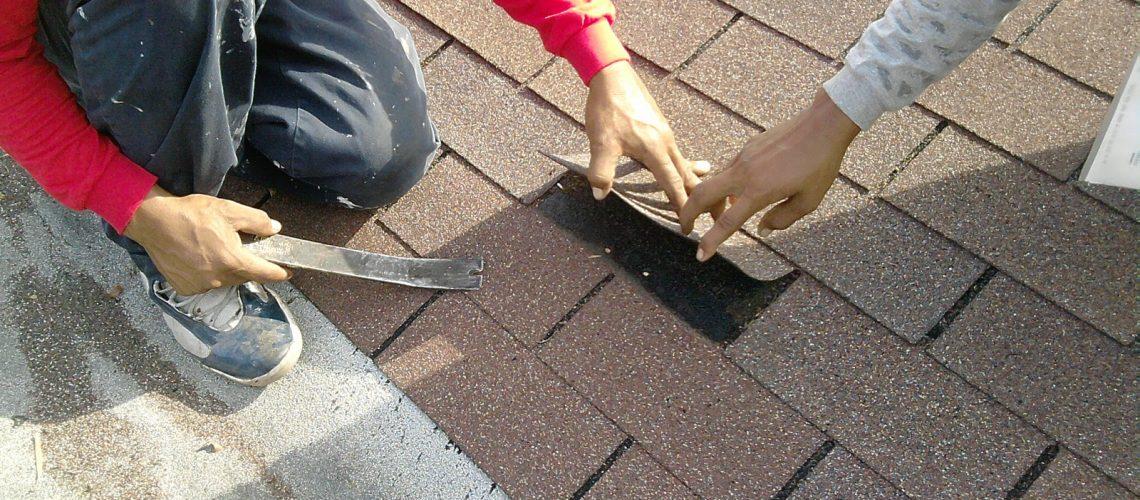 Asphalt Shingle Repairs New Port Richey 2